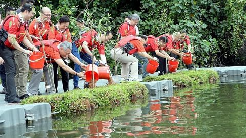 PM Lee bersama penasihat GRC Ang Mo Kio, SMC Sengkang West tanam pokok dalam modul terapung