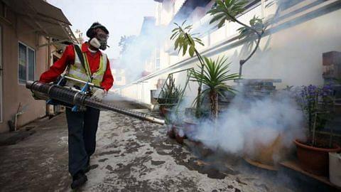 Jangkitan Zika terbaru: Pengasapan dilakukan di Simon Place