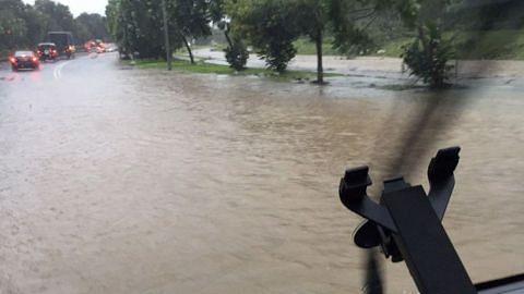 Banjir kilat di Seletar, pokok tumbang di Yishun