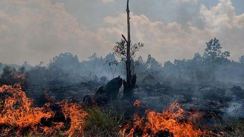 Empat wilayah Indonesia diletak di bawah amaran ancaman bencana dek kebakaran hutan