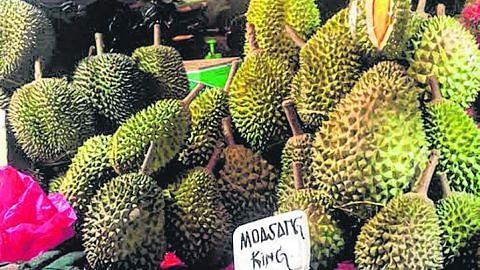 Dapat durian runtuh niaga durian dalam talian