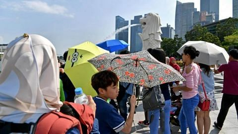 Singapore experienced eighth warmest year in 2018, December was second hottest year end in history