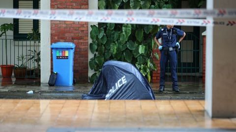Man found dead at foot of Little India HDB block; police discover body of his mother in flat
