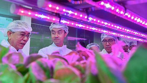 Peluang dalami ilmu teknologi pertanian moden di Republic Poly