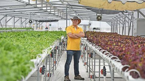 Menghasilkan 'kebun atas bumbung' di setiap kejiranan jadi misi ComCrop