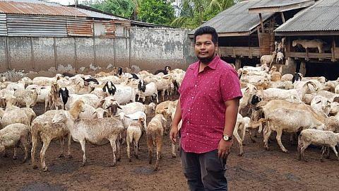 Peniaga ternak kambing mekar di M'sia, Indonesia