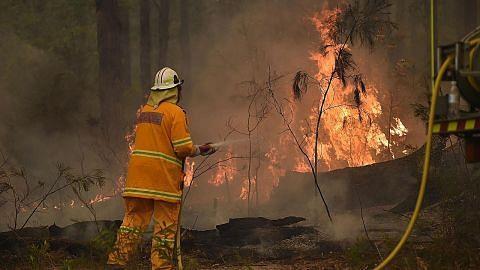 Aust terus bergelut dengan kebakaran belukar