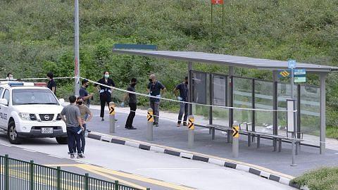 Lelaki maut dengan liang tikaman di Punggol Field