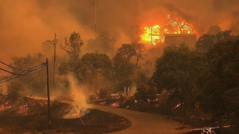 Kebakaran hutan landa California akibat ribut petir