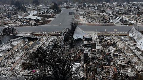 KEBAKARAN LIAR HUTAN DI AMERIKA Tragedi kebakaran hutan yang belum terhapus