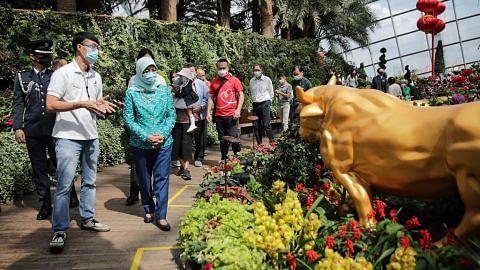 Gardens by the Bay terima derma $250,000 dari Bloomberg, dermawan individu