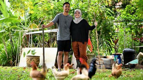 Pasangan dapat tanam sayur, ternak ayam... hidup dalam suasana ala kampung...
