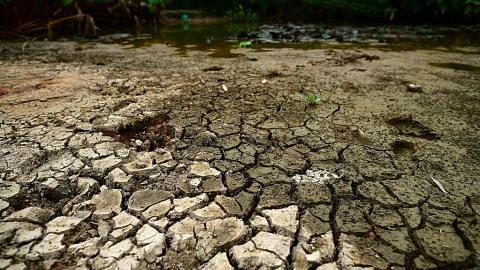 Kajian: Majoriti warga yakin dapat elak bencana iklim dunia