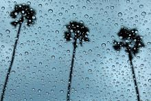 Menunggu Hujan Teduh BIODATA PENULIS