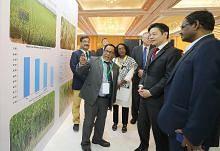 Sidang kupas masa depan bekalan beras sejagat