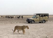 Namibia negara yang indah lagi menakjubkan