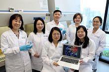 Kumpulan penyelidik NTU hasilkan ginjal mini untuk bantu rawatan