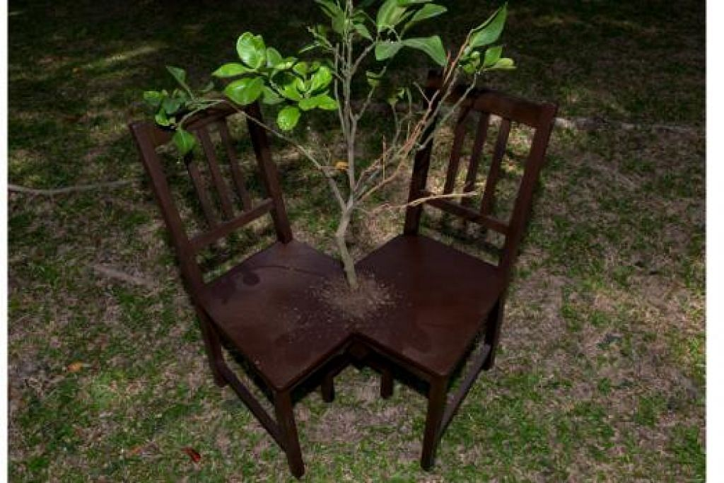 DICORAK SEKITARAN: Penggunaan kayu dalam karya seni berupa cantuman dua kerusi dan tumbuhan menghijau ini menggambarkan keadaan manusia yang dicorak sekitaran dan berdepan dengan halangan dalam berkomunikasi.