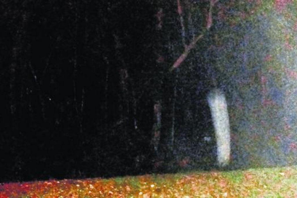 53 Gambar Alam Hantu Terlihat Keren
