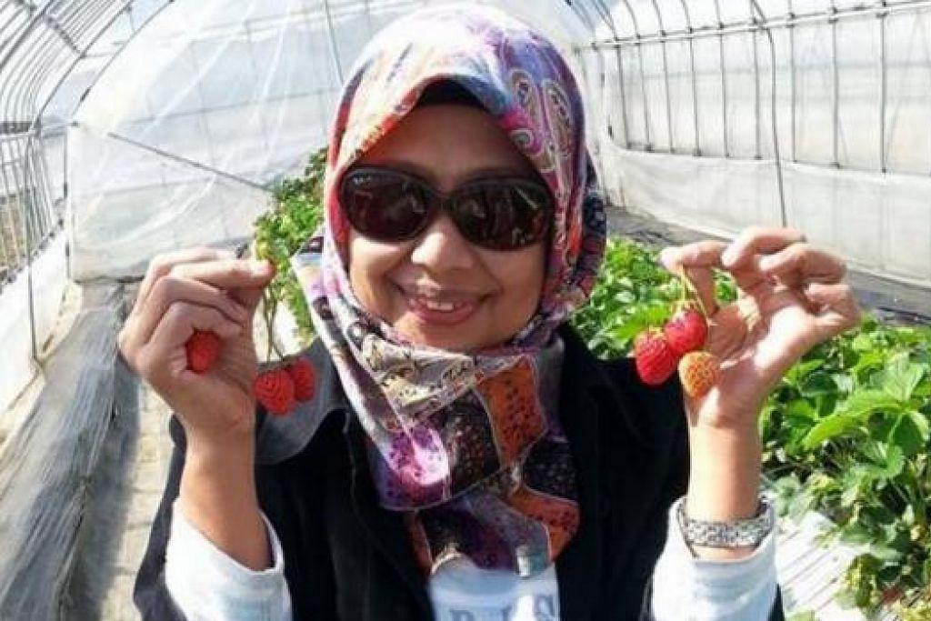 SEDAPNYA: Penulis sempat memetik buah strawberry di sebuah ladang strawberry di Hakone. - Foto-foto ihsan RAHIMAH MOHAMAD