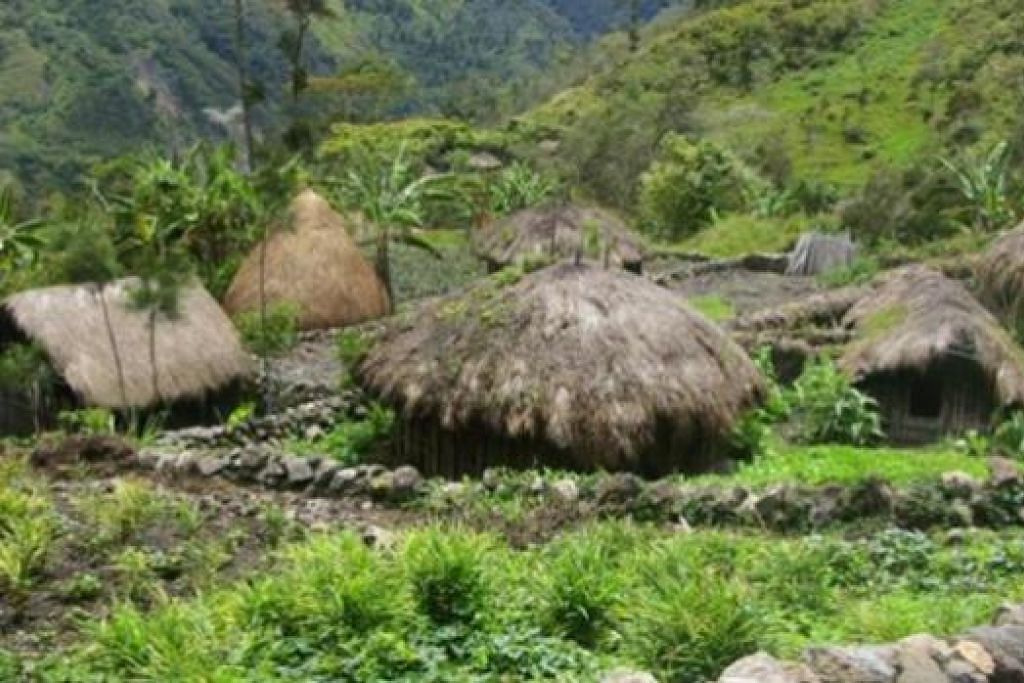 RUMAH DI TENGAH RIMBA: Rumah suku Dani di Papua New Guinea yang dipanggil honai.- Foto MUSAFIR LARA SELAMAT
