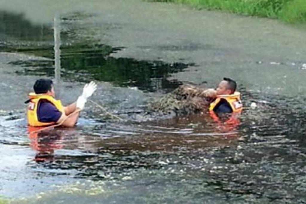 PENEMUAN MAYAT: Mangsa dipercayai lemas dalam tali air selepas motosikal yang dinaiki terbabas. - Foto HARIAN METRO