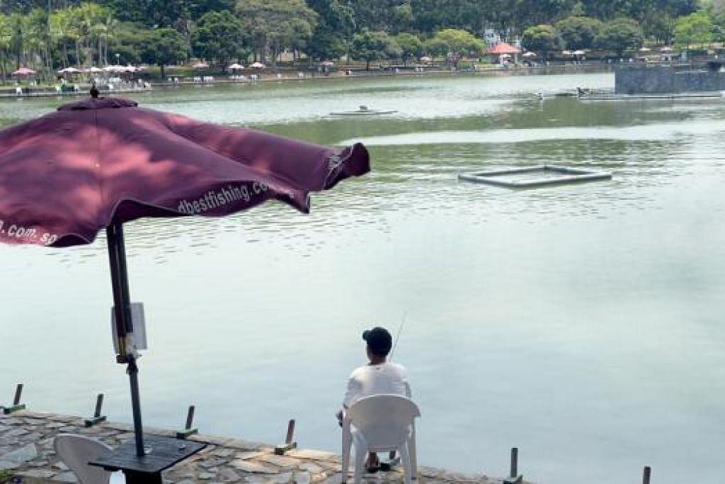 PANCING DI KOLAM: Suasana tenang di kolam ikan Pasir Ris Town Park membuat tempat ini popular di kalangan pemancing.