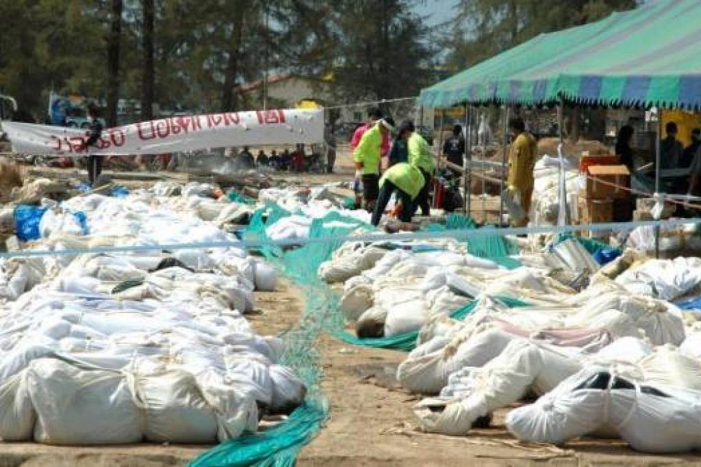 PALING DASYAT: Dianggarkan sekitar 280,000 nyawa terkorban dalam tragedi Tsunami pada Disember 2004 yang menjejas 11 negara dari Thailand hingga ke Afrika Timur. – Foto-foto SPH