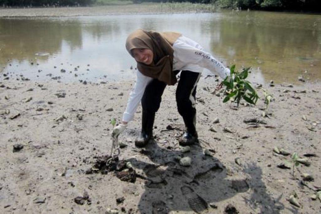 MINAT ALAM SEMULA JADI: Cik Normala Alias, seorang guru, merupakan salah seorang sukarelawan di Paya Simpanan Sungei Buloh. - FOTO NORMALA ALIAS