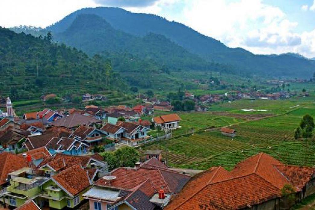 PEMANDANGAN INDAH: Ladang teh dan rumah kampung di luar kota Bandung. Bandung turut menjadi antara destinasi popular kerana cuacanya yang lebih sejuk serta harganya yang berpatutan. - Foto ZAKI ZULFAKAR NOORDIN