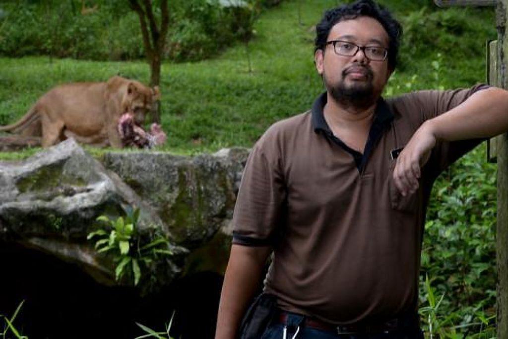 SERASI DENGAN SINGA: Encik Faizal Aziz, yang sudah bertugas di Night Safari sejak 10 tahun lalu, berasa puas dengan kerjaya menjaga haiwan kerana dapat menyumbang kepada pembiakan haiwan yang hampir pupus di dunia. - Foto-foto TUKIMAN WARJI