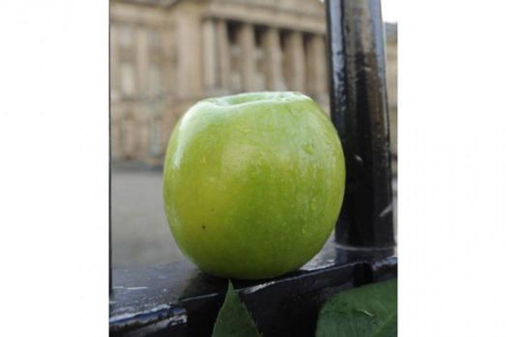 HATI-HATI MAKAN BUAH: Satu kajian yang dilaporkan baru-baru ini menunjukkan buah-buahan seperti epal yang dijadikan makanan ringan boleh mencetuskan masalah gigi rosak, plak gigi bertambah dan penghakisan lapisan luar gigi yang keras. - Foto REUTERS