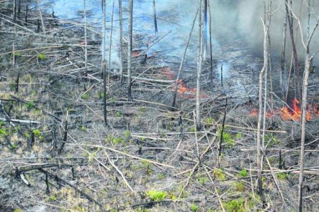 ANGKARA JEREBU: Masalah asap daripada jerebu akibat pembakaran hutan di Sumatera menjejas negara-negara jiran. Sesetengah pihak menganggap adalah baik jika masalah jerebu ini diselesaikan dengan 'cara Asean'. - Foto fail