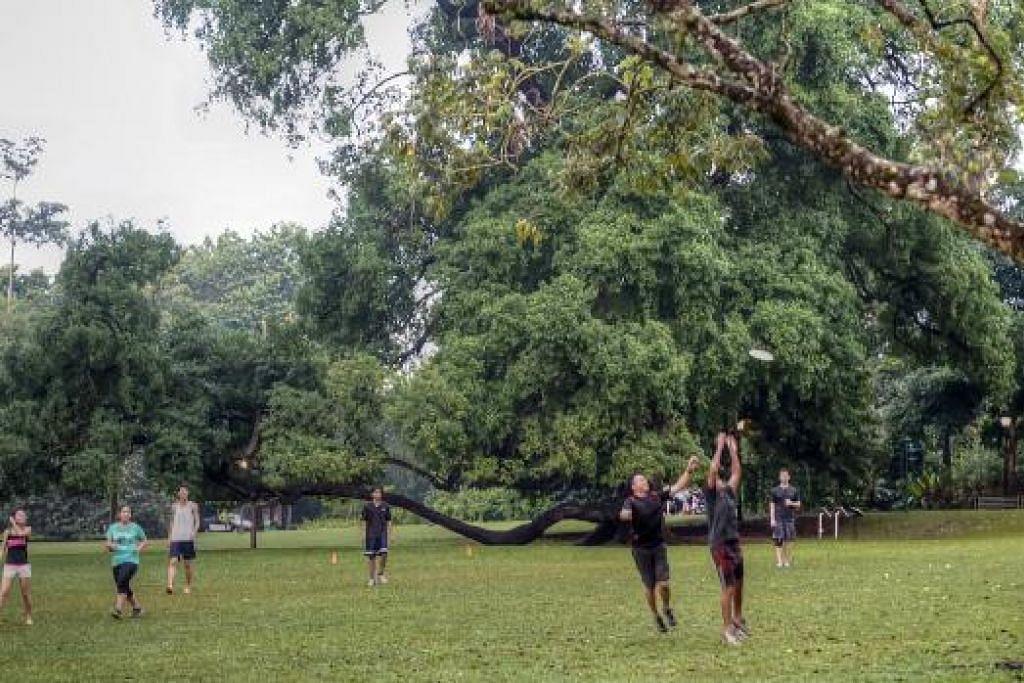TEMPAT BERIADAH: Taman Bunga merupakan tempat sesuai bersenam bersama kawan dan keluarga.