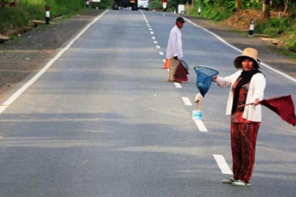 CARA UNIK MENGUMPUL DERMA: Para sukarelawan beratur di jalan raya sambil menghulurkan bakul berjaring kepada para pemandu di jalan raya.