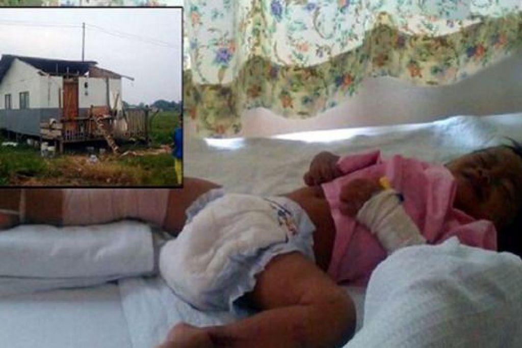 MUJUR SELAMAT: Bayi berusia 18 bulan ini mengalami patah paha kanan setelah diterbangkan ribut sejauh 150 meter dari rumahnya. - Foto METRO AHAD