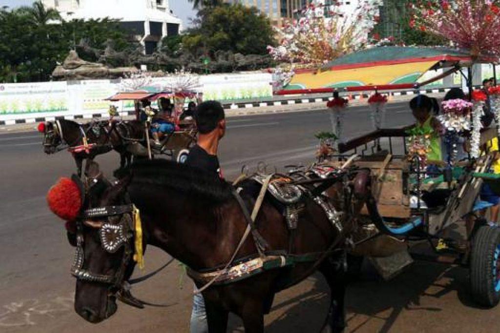 PENGANGKUTAN TRADISIONAL: Encik Bajuri sempat merakam gambar 'delman', sejenis pengangkutan yang ditarik kuda.