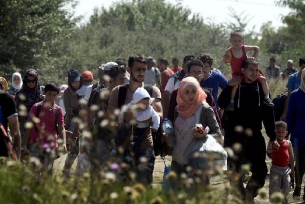 LARI MENINGGALKAN TANAH AIR: Para pelarian Syria dan pendatang tanpa izin berjalan merentasi sebuah kawasan menuju Gevgelija di Macedonia, untuk ke sempadan Serbia kelmarin. - Foto AFP