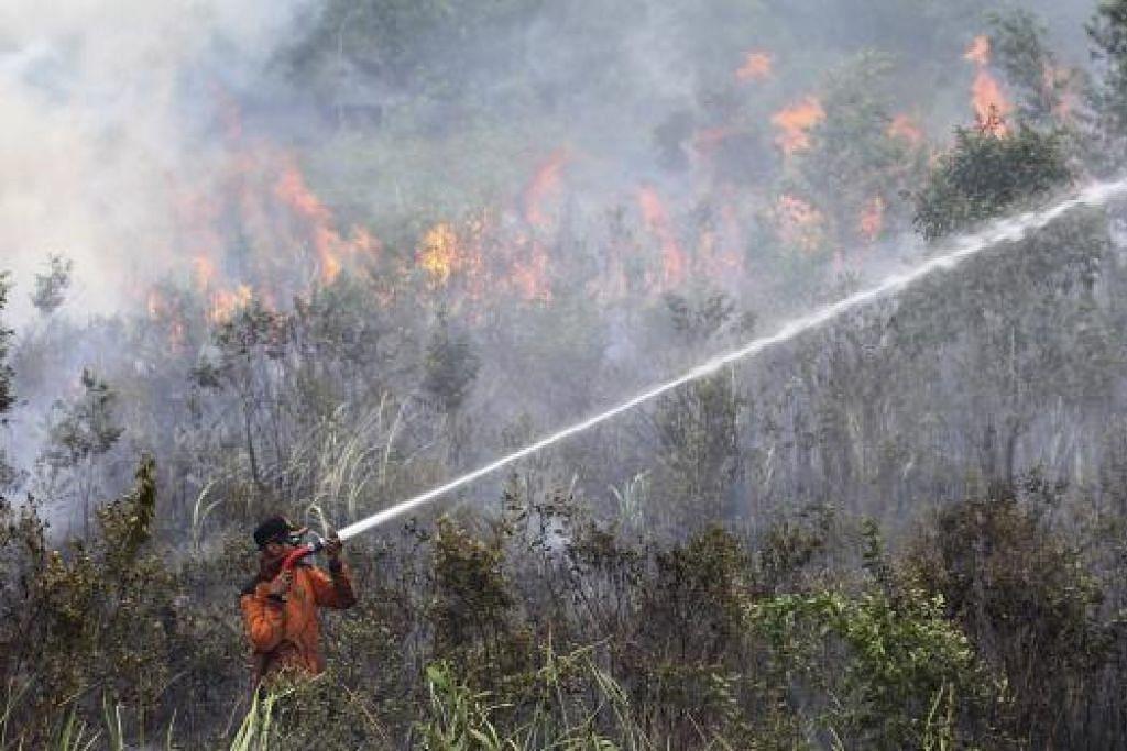 Seorang pegawai Badan Pengurusan Bencana Daerah (BPBD) Indonesia berusaha memadam api kebakaran hutan di Sei Rambutan di Ogan Ilir, Sumatera Selatan, pada Rabu, 16 September. Gambar REUTERS