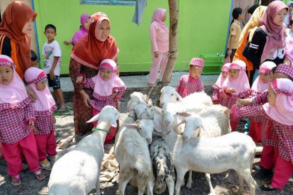 TENGOK KAMBING: Kanak-kanak tahfiz di Desa Soko Gedang Alas, Semarang, mengusik kambing yang bakal dikorbankan.