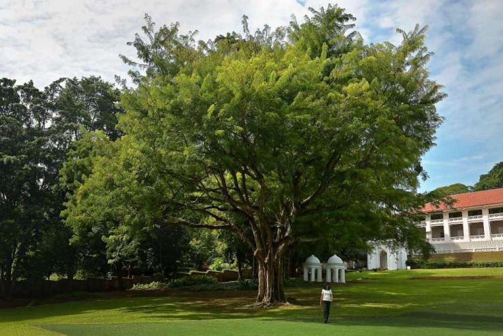 Taman Fort Canning Park salah satu daripada dua tapak dikenal pasti oleh Jawatankuasa Memorial Pengasas.