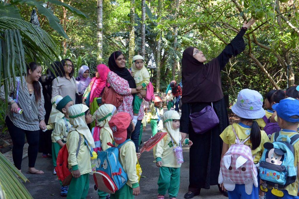 Murid tajaka Jamiyah dibawa ke Kebun Bunga sebagai sebahagian daripada pembelajaran luar bilik darjah. Yurun media tajaka tunrun selepas 169 pusat di bawah 23 pengendali menurunkan yuran pada Januari, seperti yang dikehendaki di bawah skim pengendali rakan kongsi (POP) baru.