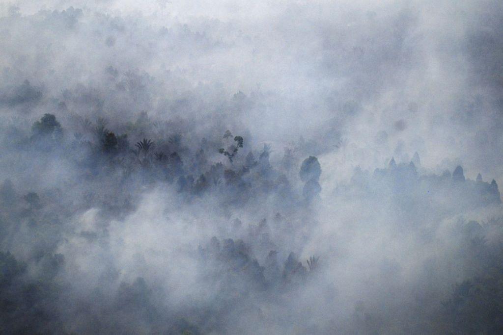 Gambar dari udara kebakaran hutan berhampiran perkampungan Bokor di Kepulauan Meranti di Riau Mac lalu.