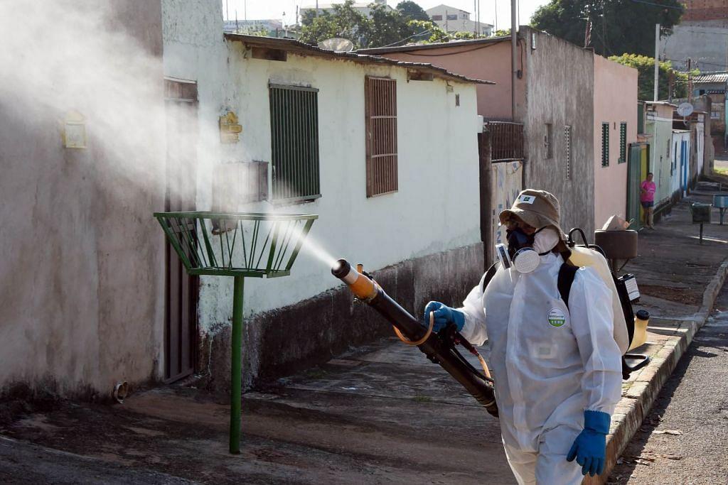 Seseorang kakitangan mewasap terhadap nyamuk Aedes aegypti, pembaca virus denggi, chikungunya dan Zika, di Gama, Brazil.