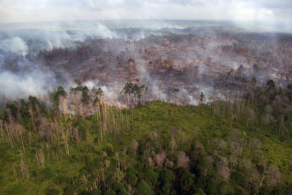 Kebakaran hutan berhampiran perkampungan Bokor di Kepulauan Meranti, Riau.