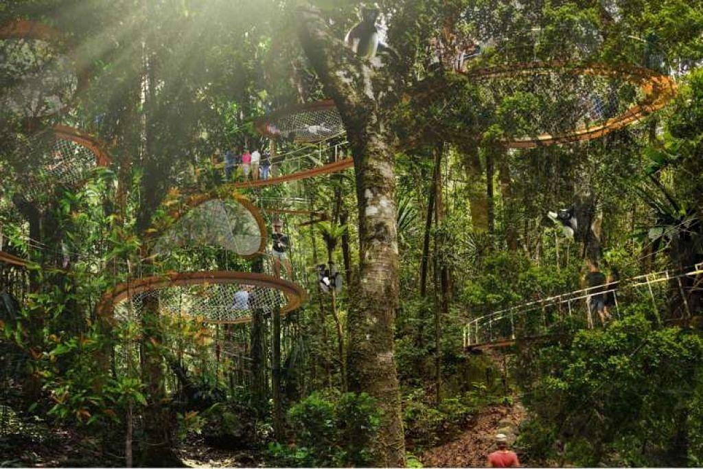 Gambaran artis taman hutan tropika baru di Mandai.