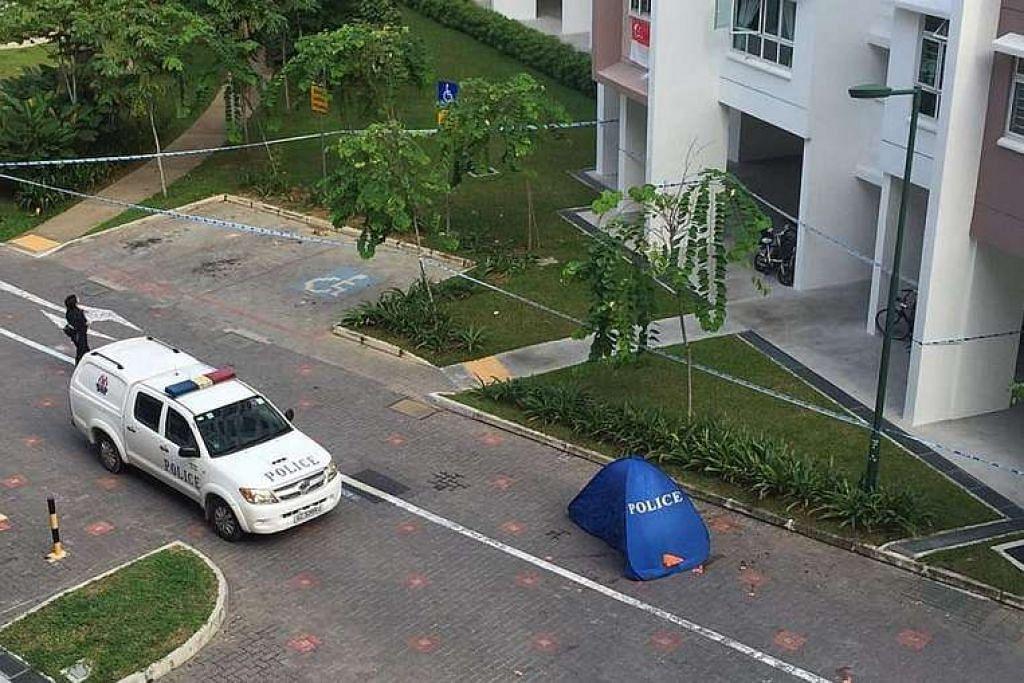 Sebanyak 409 kes bunuh diri dilaporkan di Singapura tahun lepas, paling rendah sejak 2012.