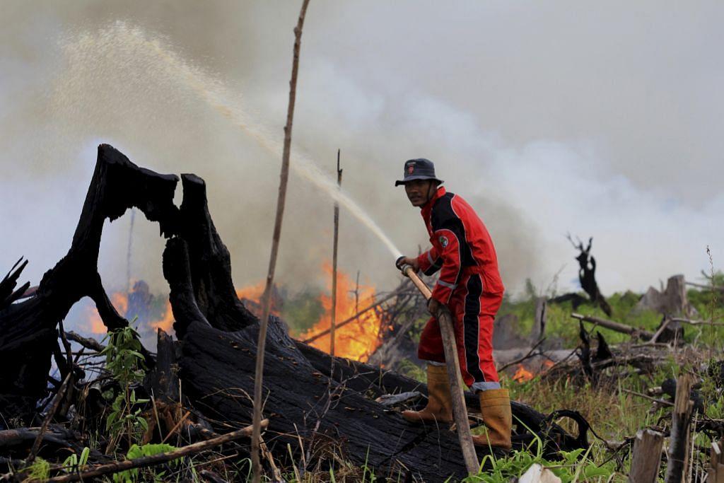 Riau isytihar darurat susuli kebakaran hutan di Sumatera