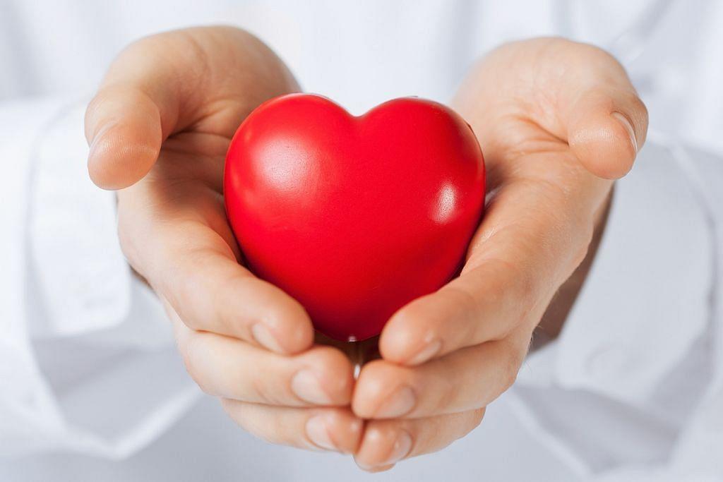 Cara memeriksa kebersihan hati