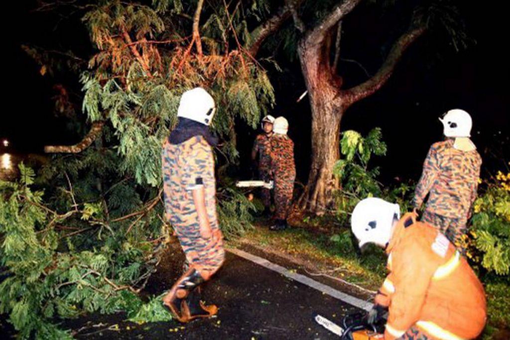 Ribut di Pulau Pinang akibatkan banjir kilat, pokok tumbang